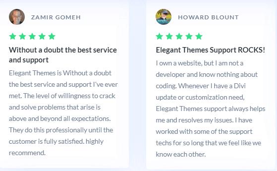 Divi Support reviews